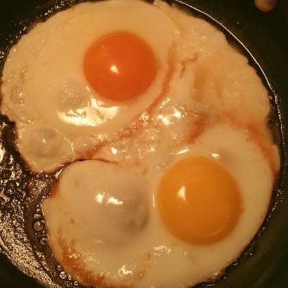 Happy Egg vs Costco Egg