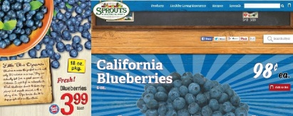 Blueberries sale